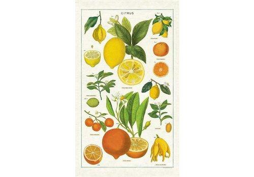 Cavallini Papers & Co Cavallini - Citrus - Tea Towel