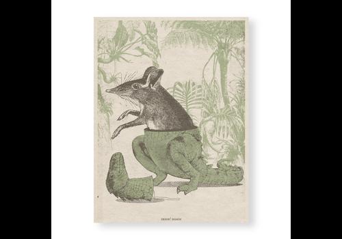 Error Design Error Design - Jurassic Rat - 18x13cm Print