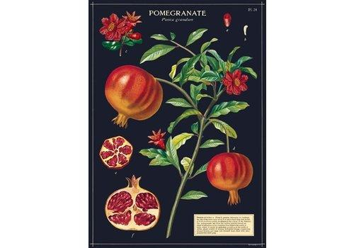 Cavallini Papers & Co Cavallini - Pomegranate - Wrap/Poster