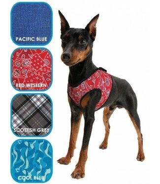 Doxtasy/Animal Gear Animal Gear Aqua Coolkeeper Comfy Harness