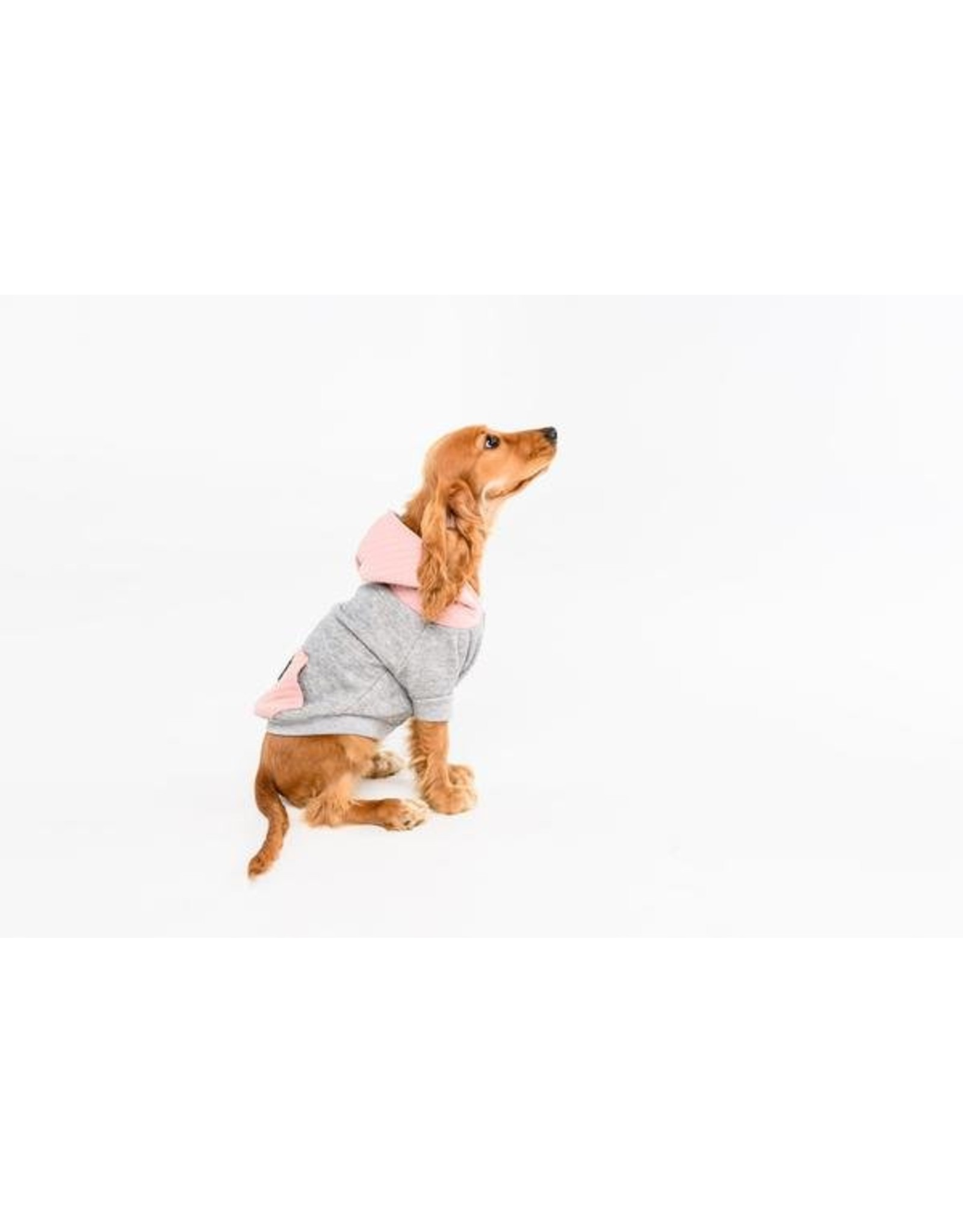 Big and Little Dogs Big and & Little Dogs hoody jumper Quilted Blush hondentrui
