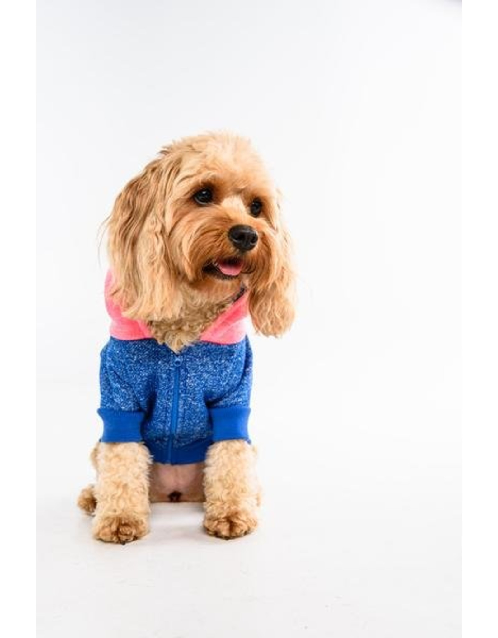 Big and Little Dogs Big and & Little Dogs hoody jumper Active Pup Neon iPink hondentrui