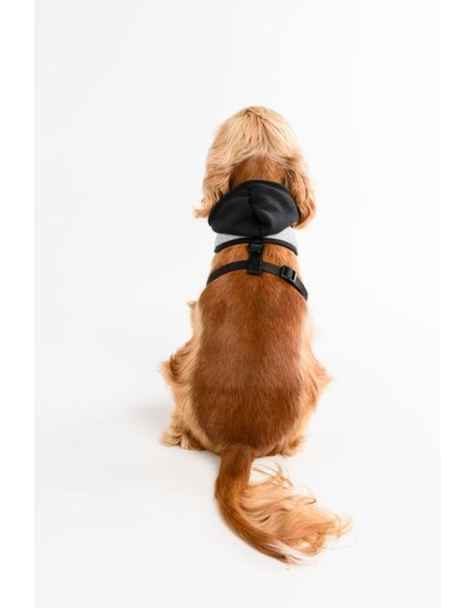 Big and Little Dogs Big and & Little Dogs Hoody Harness Classic Grey