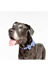 Big and Little Dogs Big and & Little Dogs Halsband Grandpa Plaid