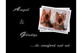 Angel & Gladys