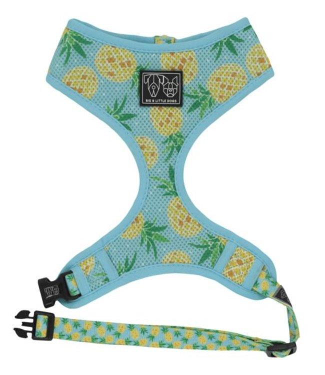Big and Little Dogs Big and Little Dogs Classic Harness Pine For You