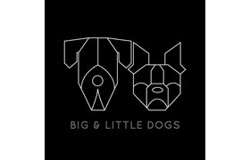 Big and Little Dogs