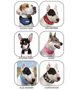 Doxtasy/Animal Gear Animal Gear Aqua Coolkeeper Cooling Collar