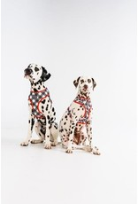Big and Little Dogs Big and Little Dogs Reversible Panda Panda
