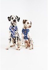 Big and Little Dogs Big and Little Dogs Reversible Scandi Forrest