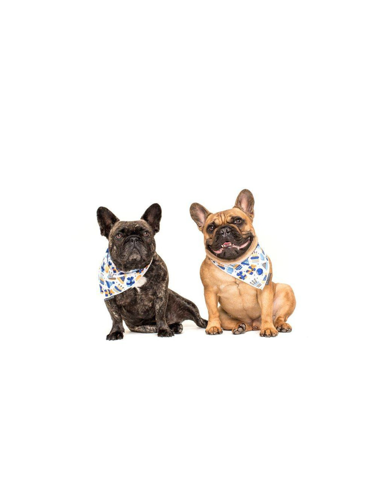 Big and Little Dogs Big and Litte Dogs Bandana Happy Bark Day Boy