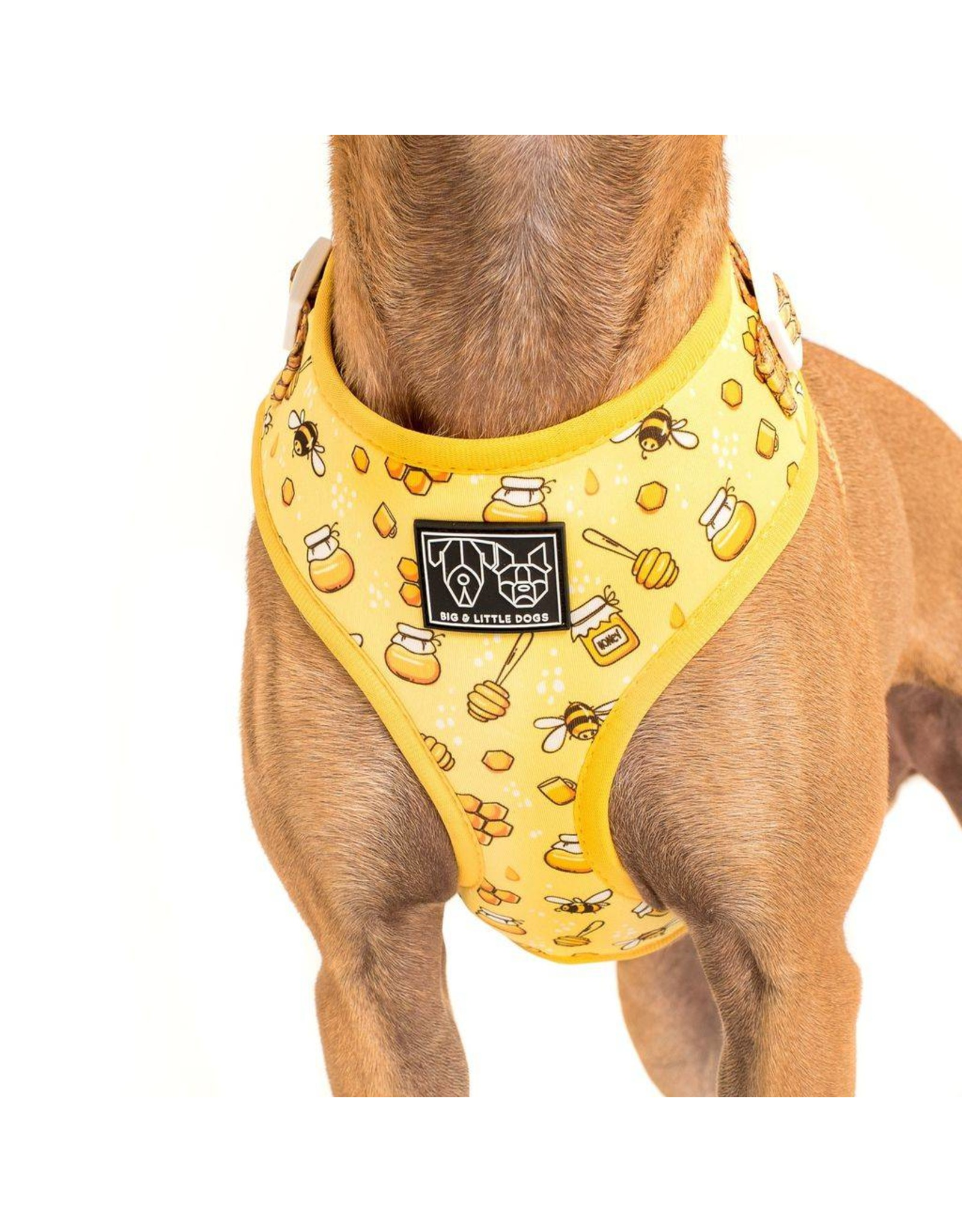 Big and Little Dogs Big and Little Dogs Adjustable Bee Hiving