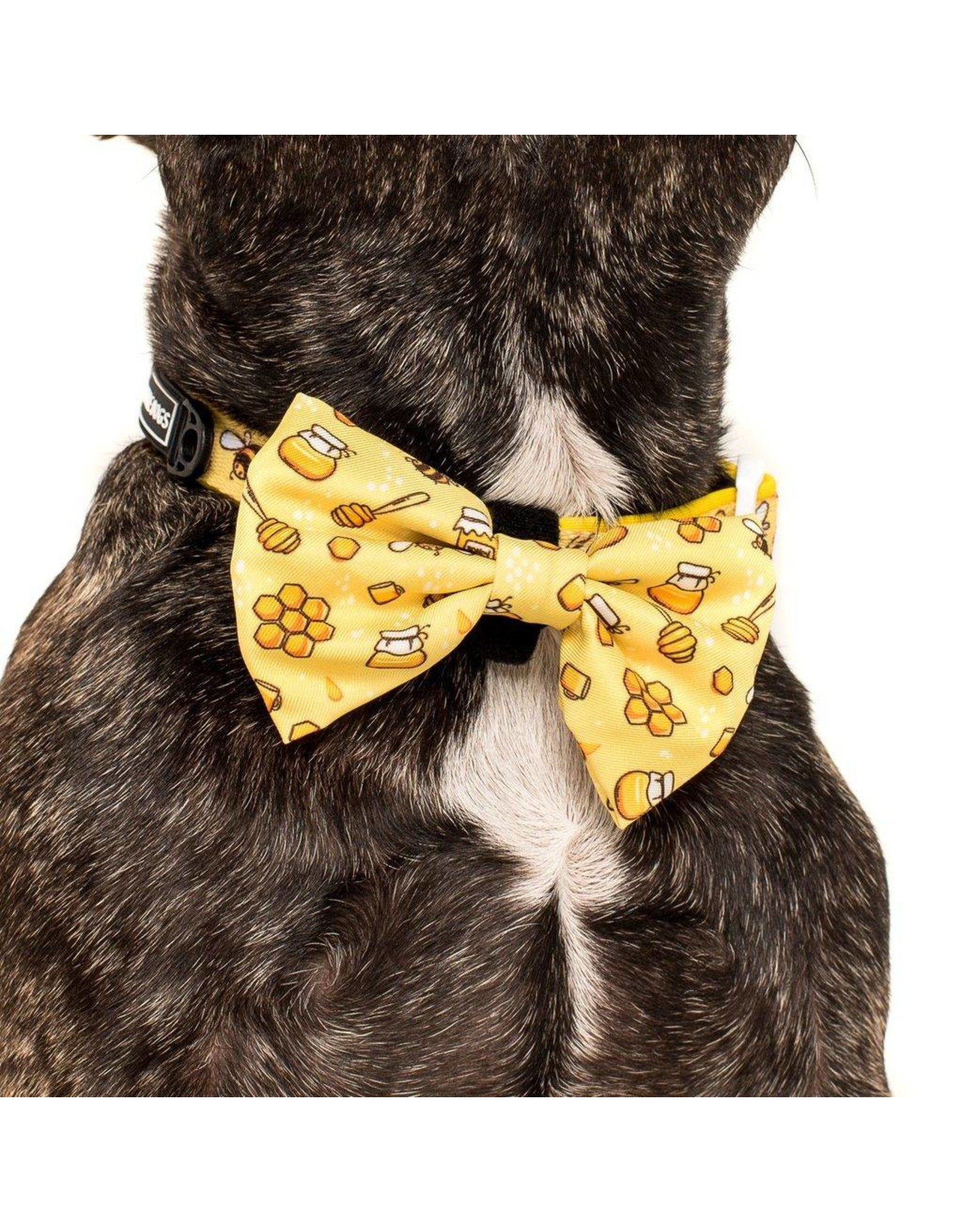 Big and Little Dogs Big and Little Dogs Halsband Bee Hiving