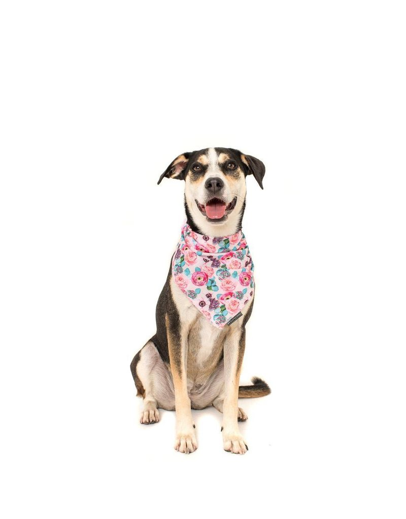 Big and Little Dogs Big and Little Dogs Bandana I'm A Succa For You
