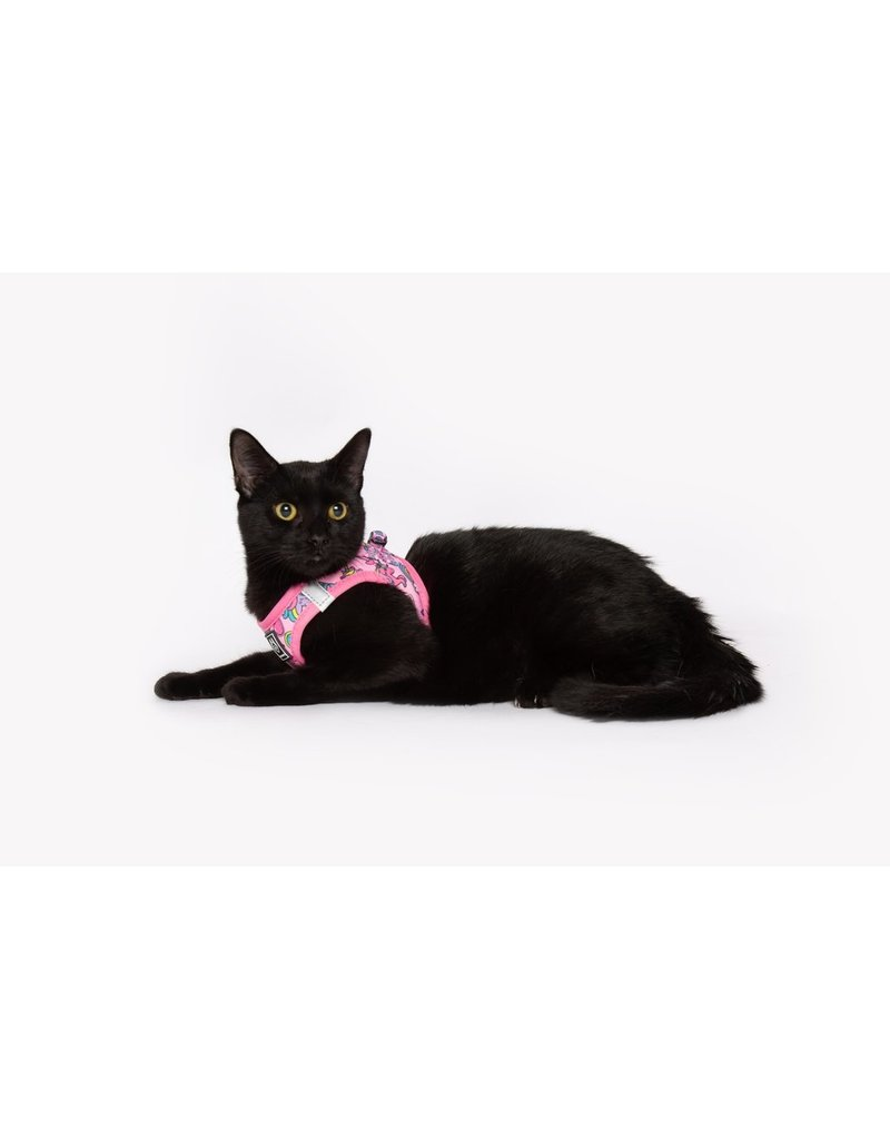 Little Kitty Little Kitty Cat Harness Step In Meow-Gical
