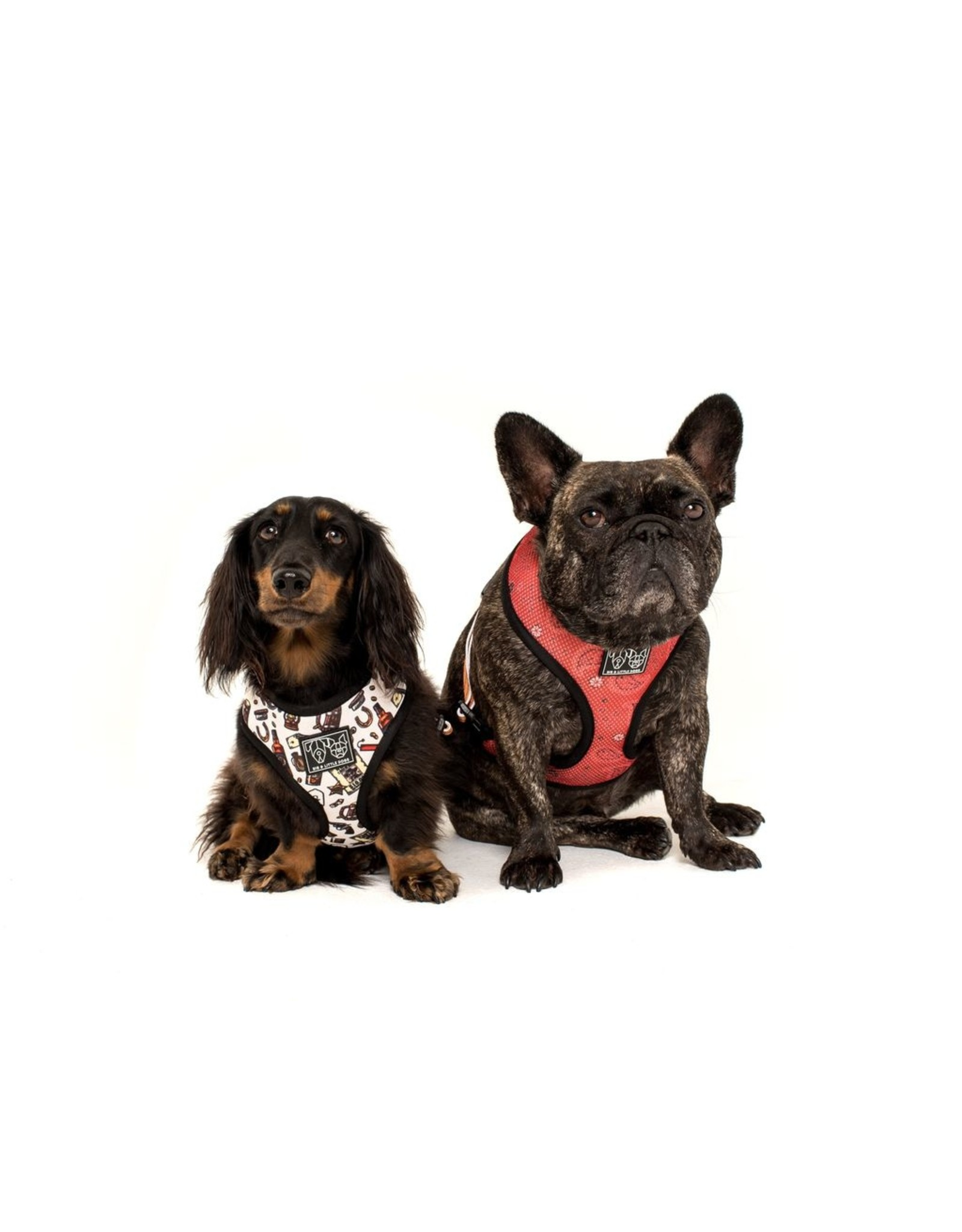 Big and Little Dogs Big and Little Dogs Reversible Best in The West