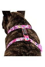 Big and Little Dogs Big and Little Dogs Strap Harness One of A Kind