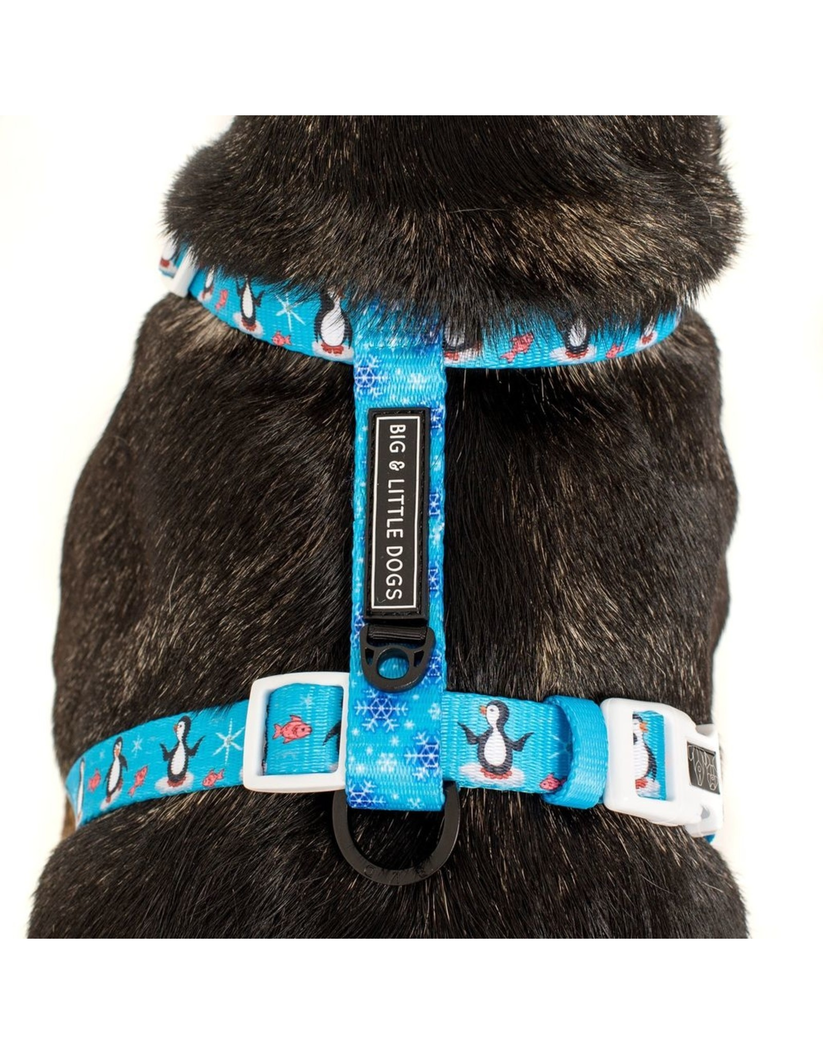Big and Little Dogs Big and Little Dogs Strap Harness Every Day I'm Waddlin'