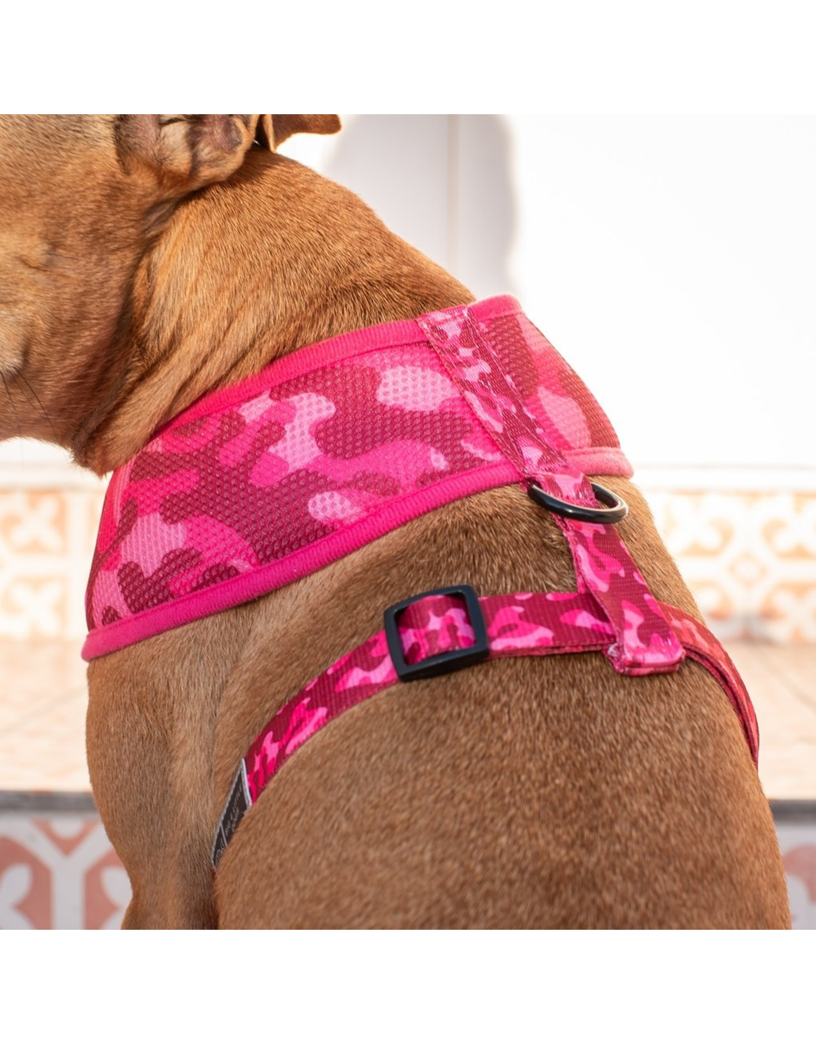 Big and Little Dogs Big & Little Dogs Classic Harness Pink Camo