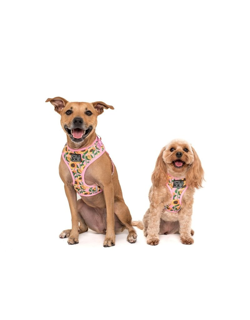 Big and Little Dogs Big and Little Dogs Adjustable You Are My Sunshine