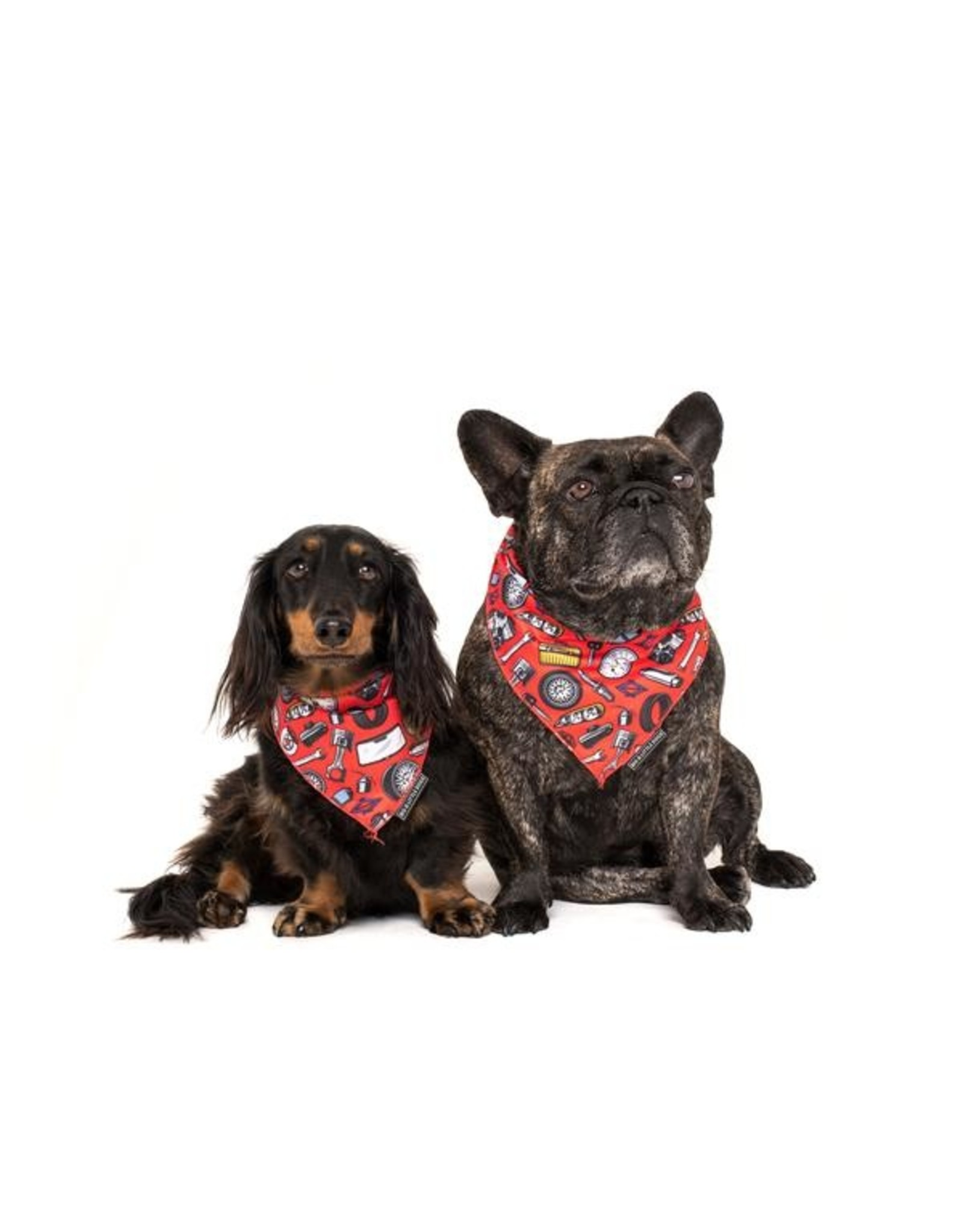 Big and Little Dogs Big  and Little dogs Bandana Need For Speed