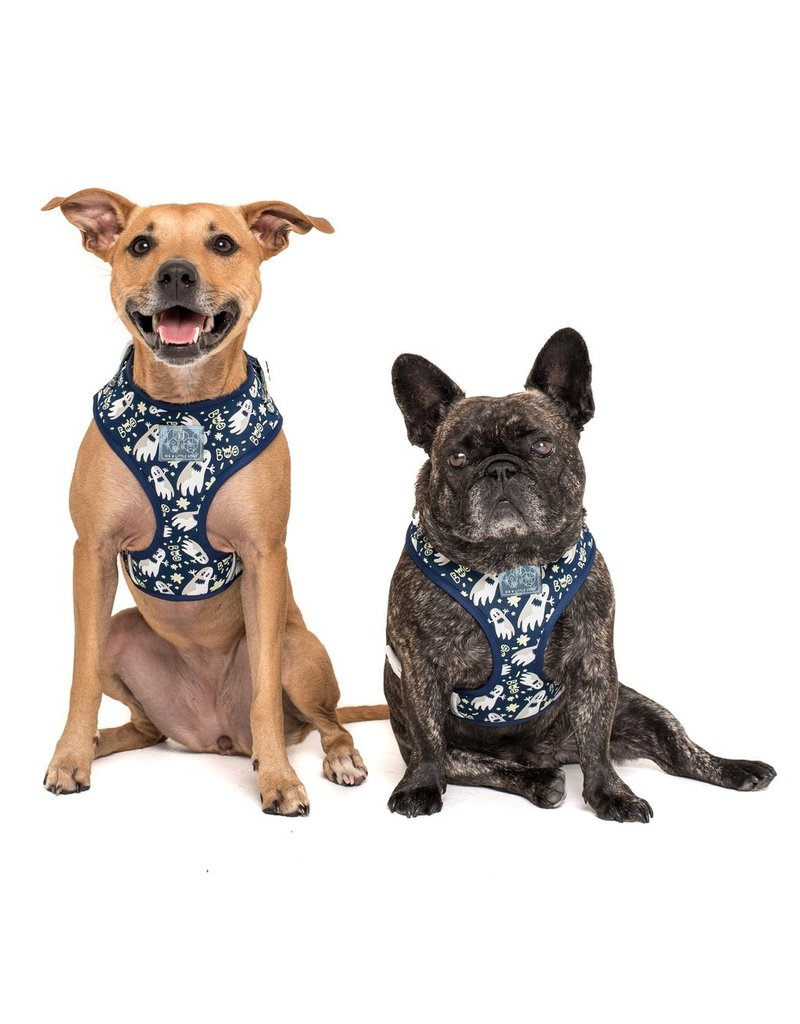 Big and Little Dogs Big and Little Dogs HOWLOWEEN ADJUSTABLE HARNESS + LEASH SET: Spooktacular (GLOW IN THE DARK!)