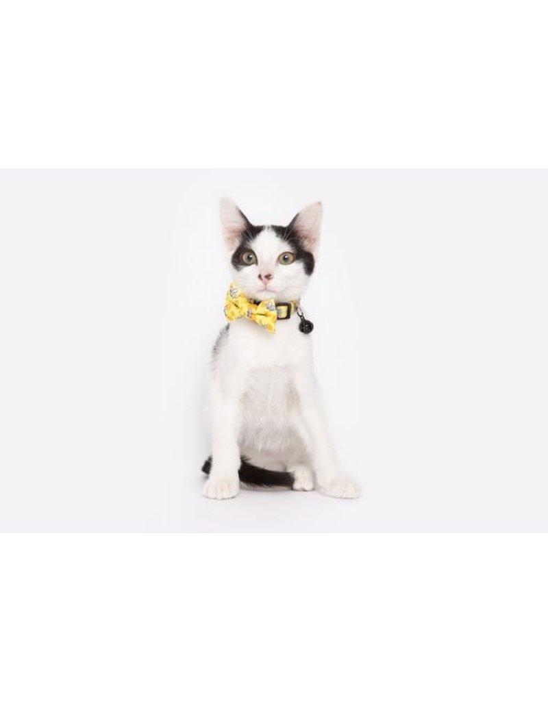 Little Kitty Little Kitty Cat Collar & Bow Tie Cheesin' Around