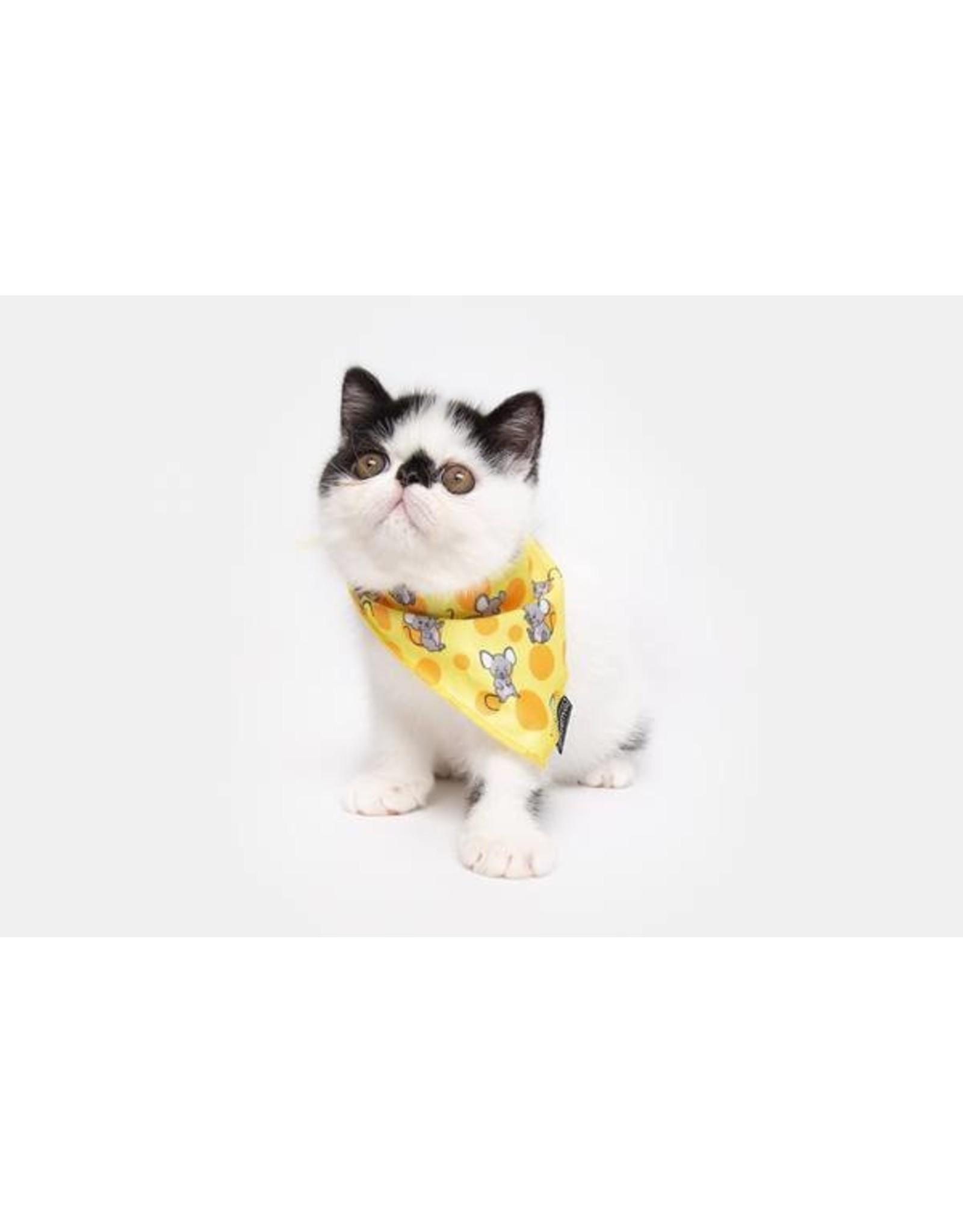 Little Kitty Little Kitty Cat Bandana Cheesin' Around