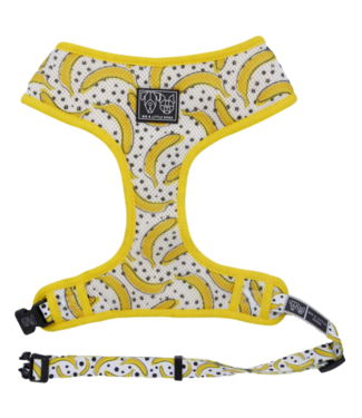 Big and Little Dogs Big & Little Dogs Classic Harness Going Bananas