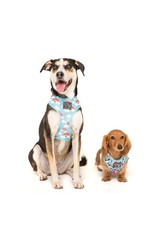 Big and Little Dogs Big and Little Dogs Reversible Beary Cute