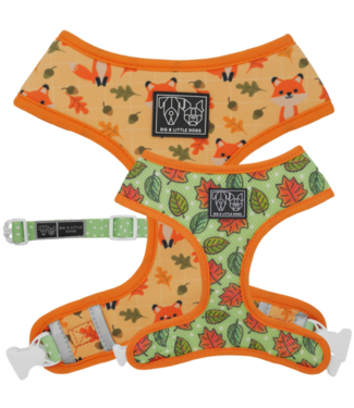 Big and Little Dogs Big and Little Dogs Reversible Feeling Foxy