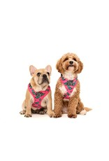 Big and Little Dogs Big and Little Dogs Adjustable Princess-asaurus
