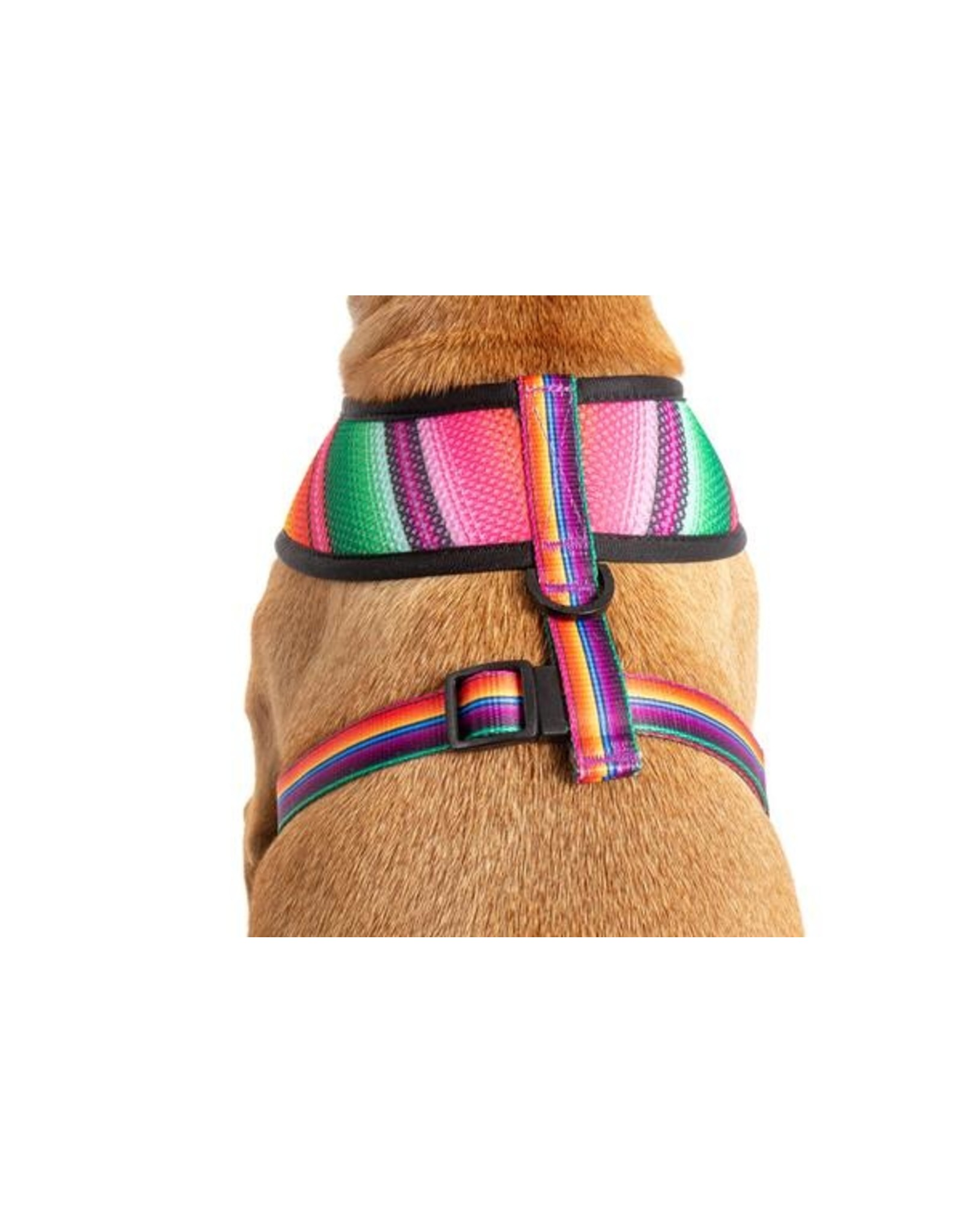 Big and Little Dogs Big and Little Dogs Reversible Mexican Fiesta