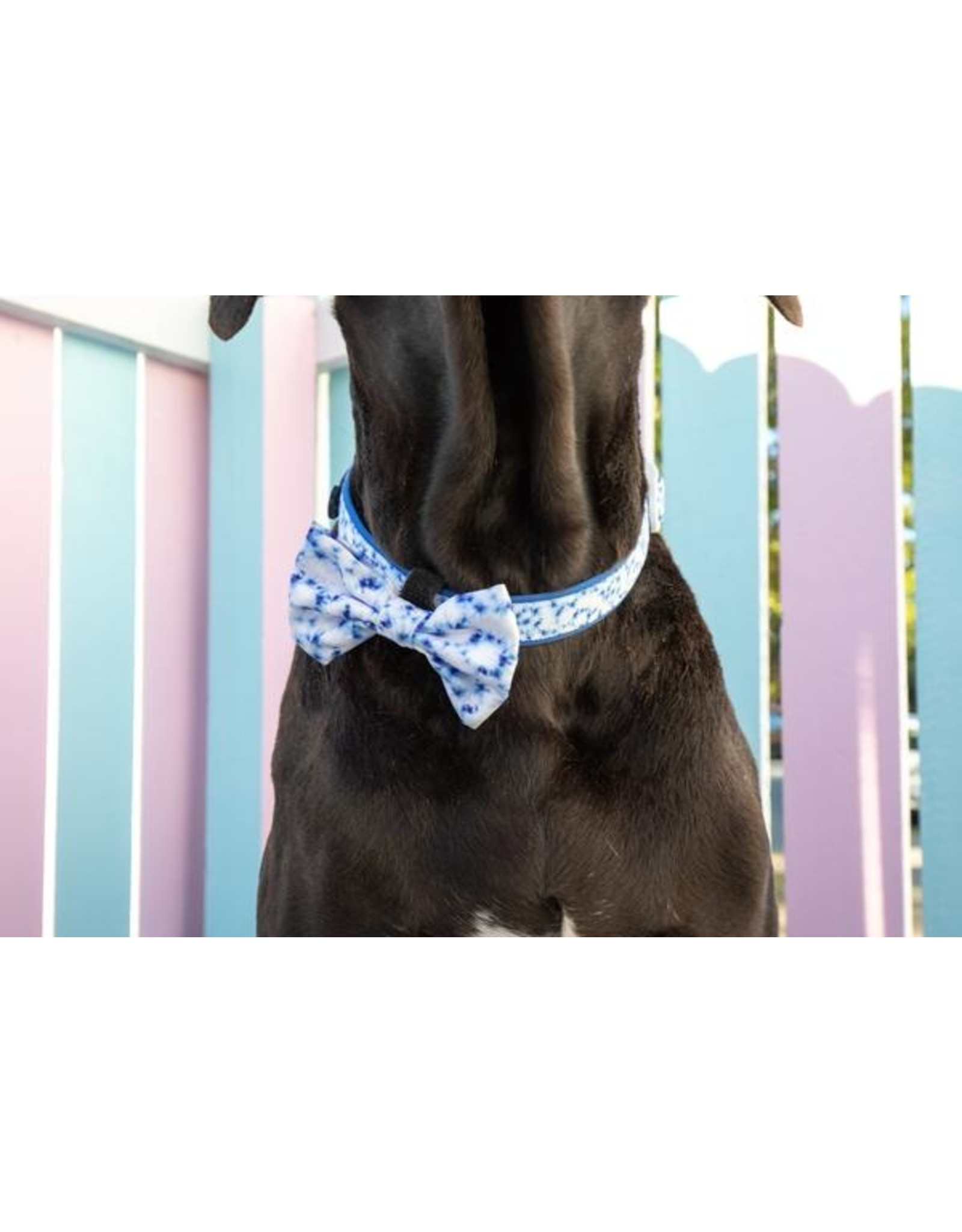 Big and Little Dogs Big and Little Dogs Halsband Blue Tie Dye