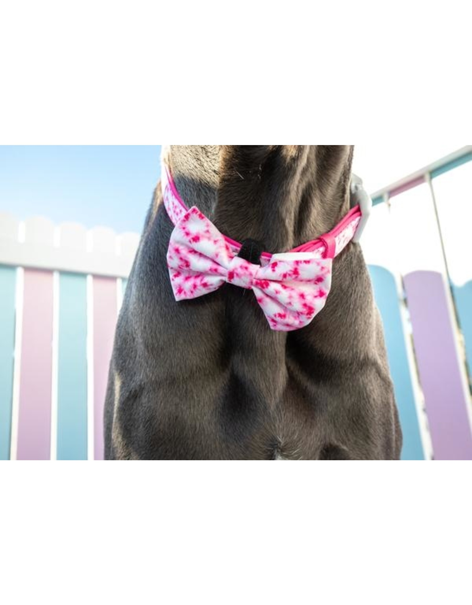Big and Little Dogs Big and Little Dogs Halsband Pink Tie Dye