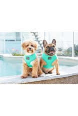 Big and Little Dogs Big and Little Dogs Classic Teal
