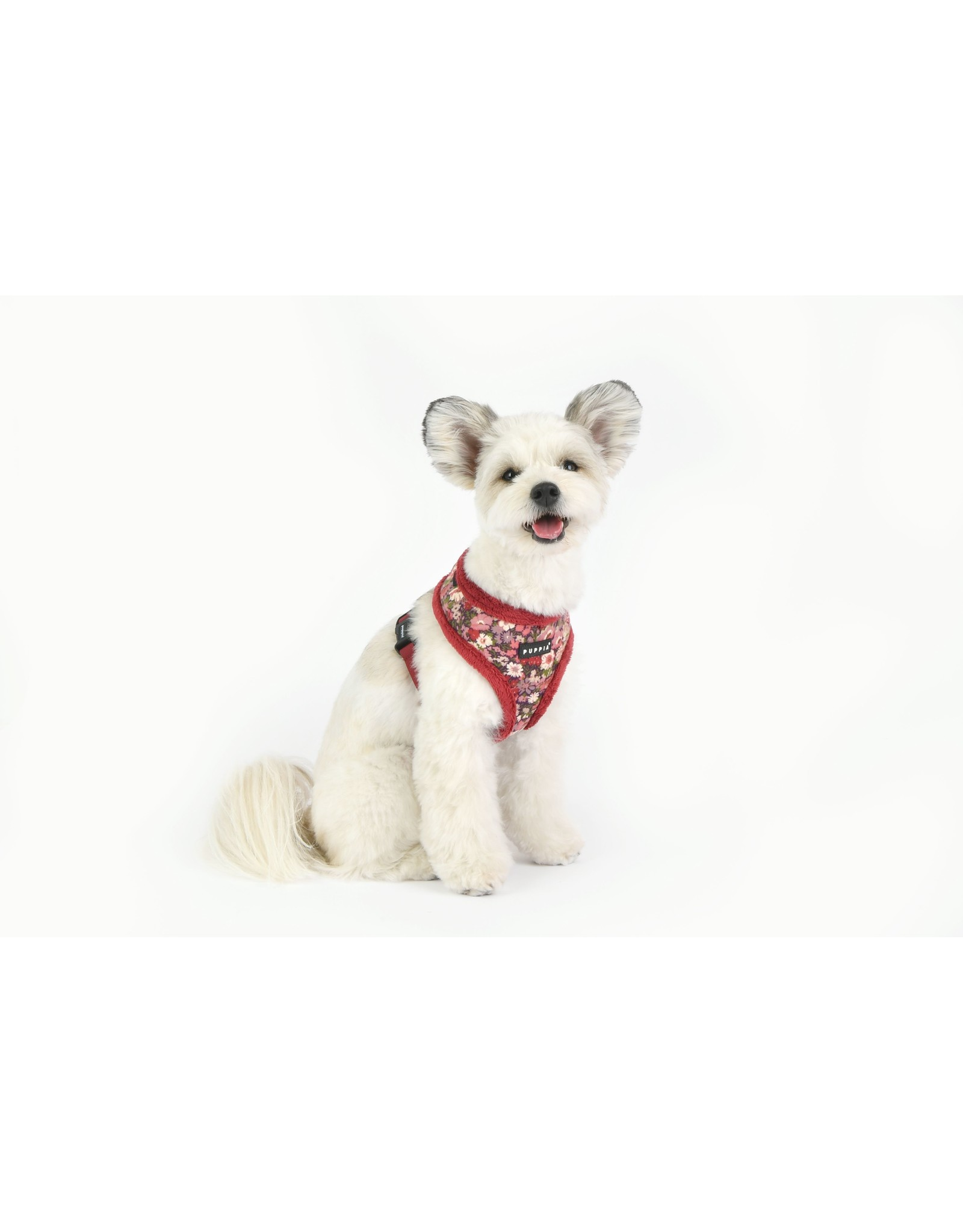 Puppia Puppia Gianni Harness Model A Wine