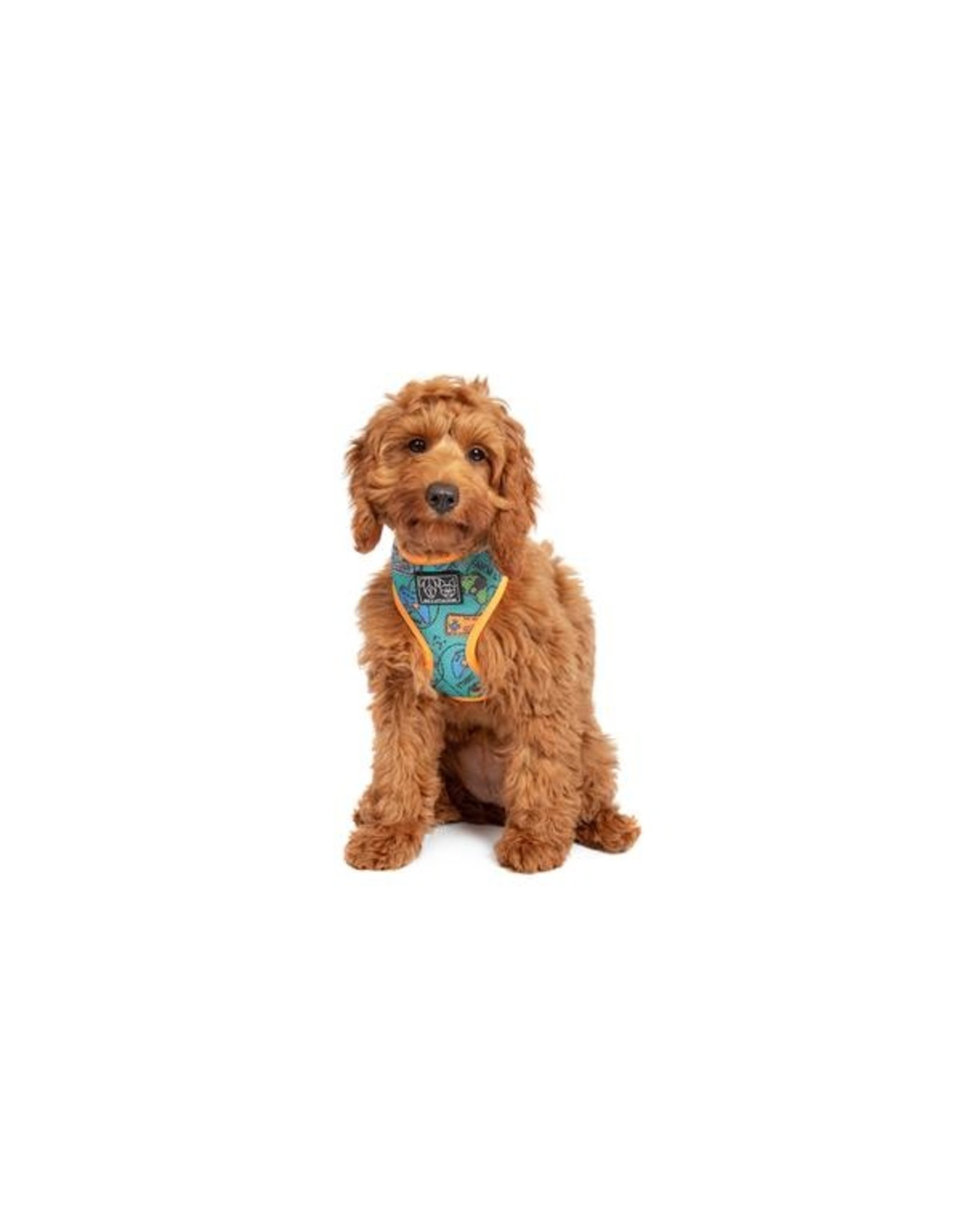 Big and Little Dogs Big & Little Dogs Classic Harness Game Over