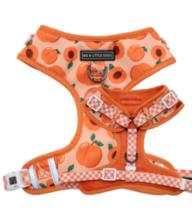 Big and Little Dogs Big and Little Dogs Adjustable Just Peachy