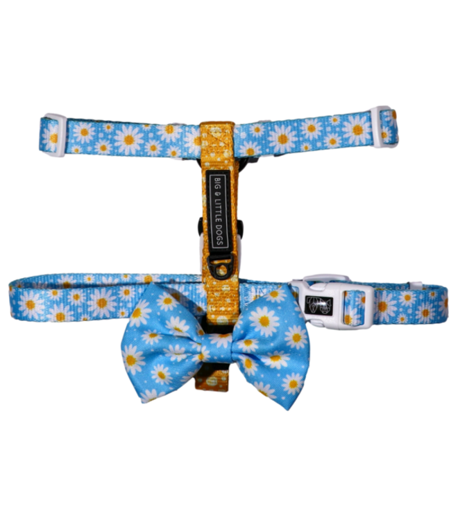 Big and Little Dogs Big and Little Dogs Strap Harness Lazy Daisy