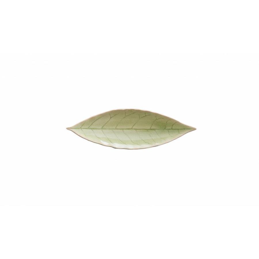 laurel leaf 18 cm riviera vert frais
