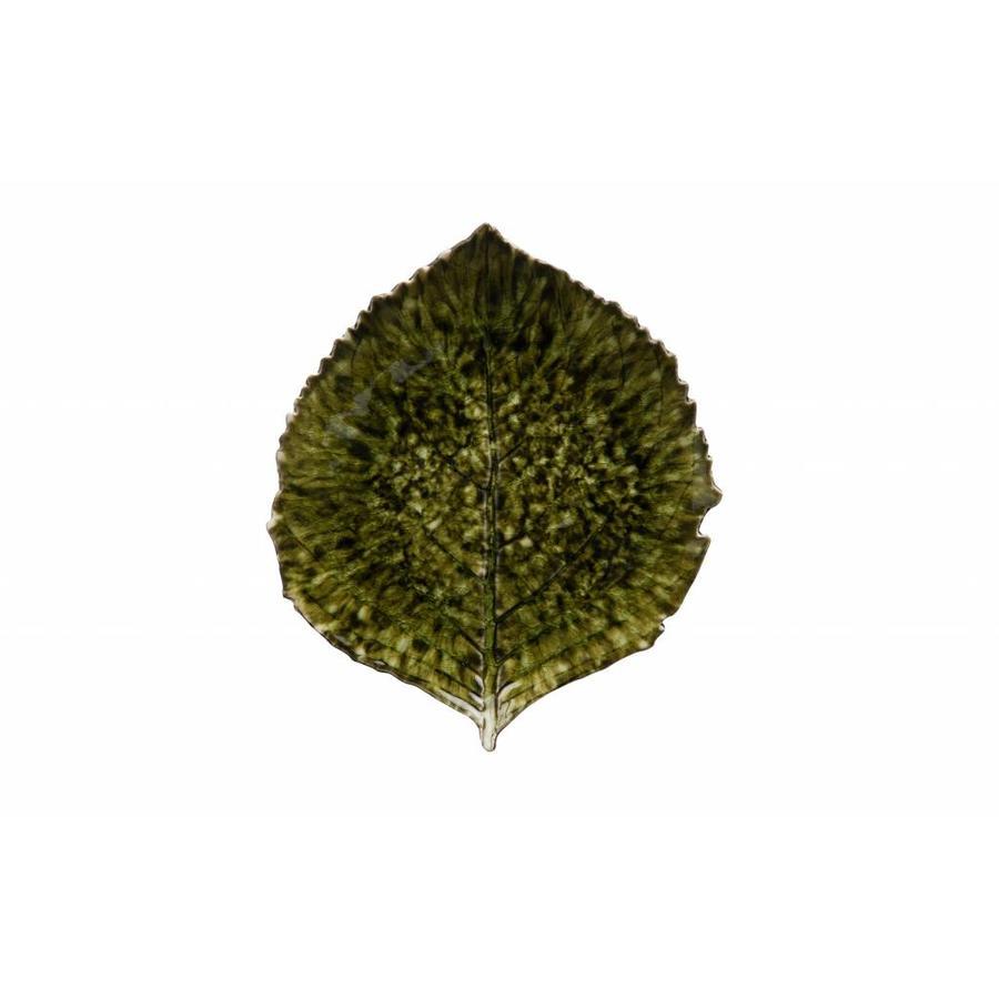 Schaaltje blad Groot riviera forets