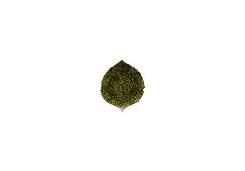 Hydrangea leaf 17cm forets
