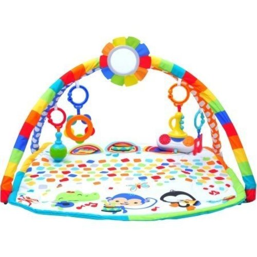 Fisher Price Bandstand Play Gym