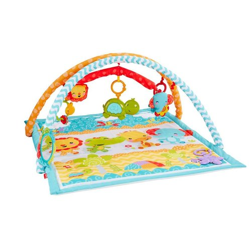 Fisher Price Wigglin' Play Gym
