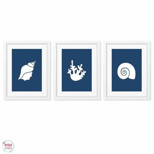 Posters Silhouetten Schelpen Zeewier - Marineblauw