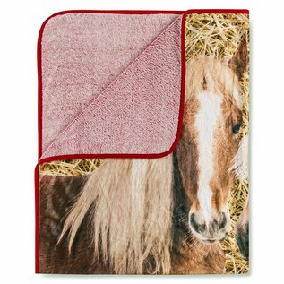Good morning Fleece plaid Pony's op stal