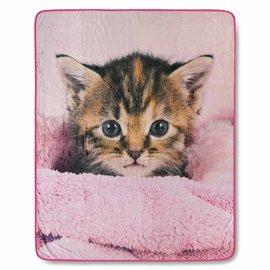 Good morning Fleece plaid Kitten poesje