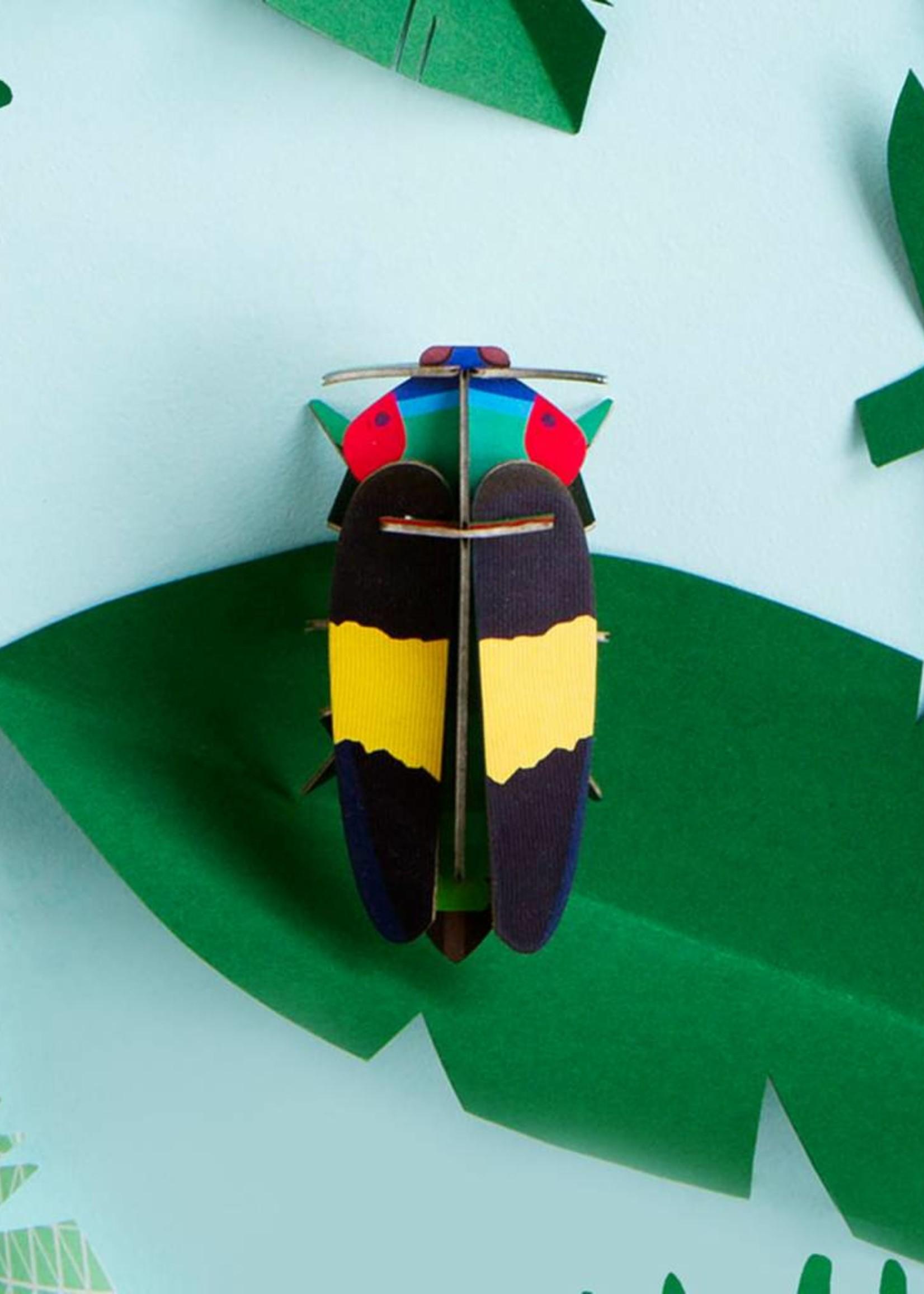 3D insecten in karton