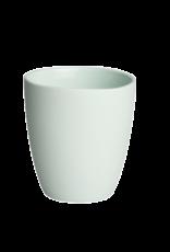 UNC Kopje -  Celadon